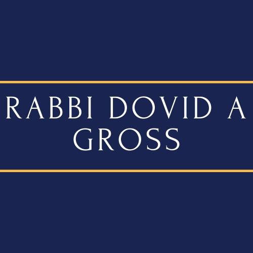 Rabbi Dovid A. Gross
